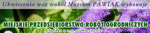 pawiakwazy____1307432165_big